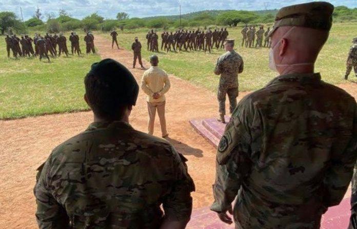 Mozambik: Islamistički militanti odrubljuju djeci glave